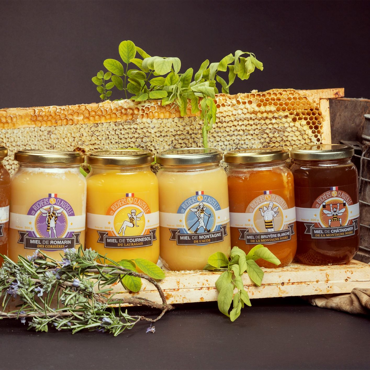 miel occitanie acacia romarin tournesol garrigue bruyère montagne vertus bienfaits toux